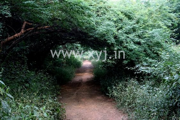 sanjay van delhi haunted