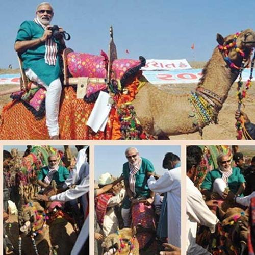 Narendra Modi over Camel