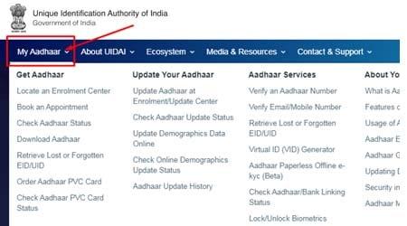 Get Lost Aadhaar My Aadhaar
