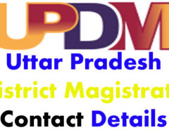 UP DM Contact Details