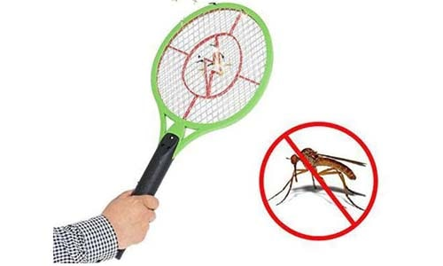 Are Mosquito Bat Dangerous??