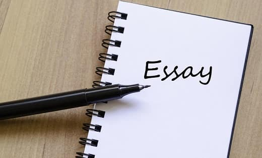 How students can cope with review essays